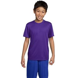 Youth 100% Polyester Moisture-Wicking T-Shirt (Good)