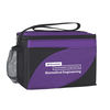6-Pack Polyester Insulated Cooler