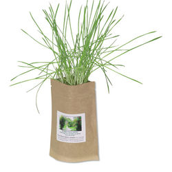 Spruce Up Your Home or Office - 2 oz. Sprout Pouch Comes w/ Everything You Need to Grow a Mini Garden Anywhere