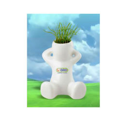 Enjoy Watching Grass Grow from the Grow Guy's Head - Seeds Included!