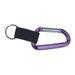 Clip-And-Go Carabiner Key Holder