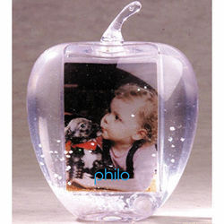 Apple Shaped 'Insert Your Own Photo or Message' Snow Globe