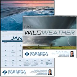 Appointment Calendars - Wild Weather