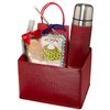 Gift Set with Thermos, Hot Cocoa & S'mores Kit