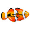 Clown Fish Shaped Tin Filled with Mints