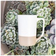 *NEW* 17 oz Speckled Stoneware Mug with Glazed Clay Base