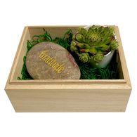 *NEW* Gratitude Succulent Box with 'Gratitude'-Etched Rock